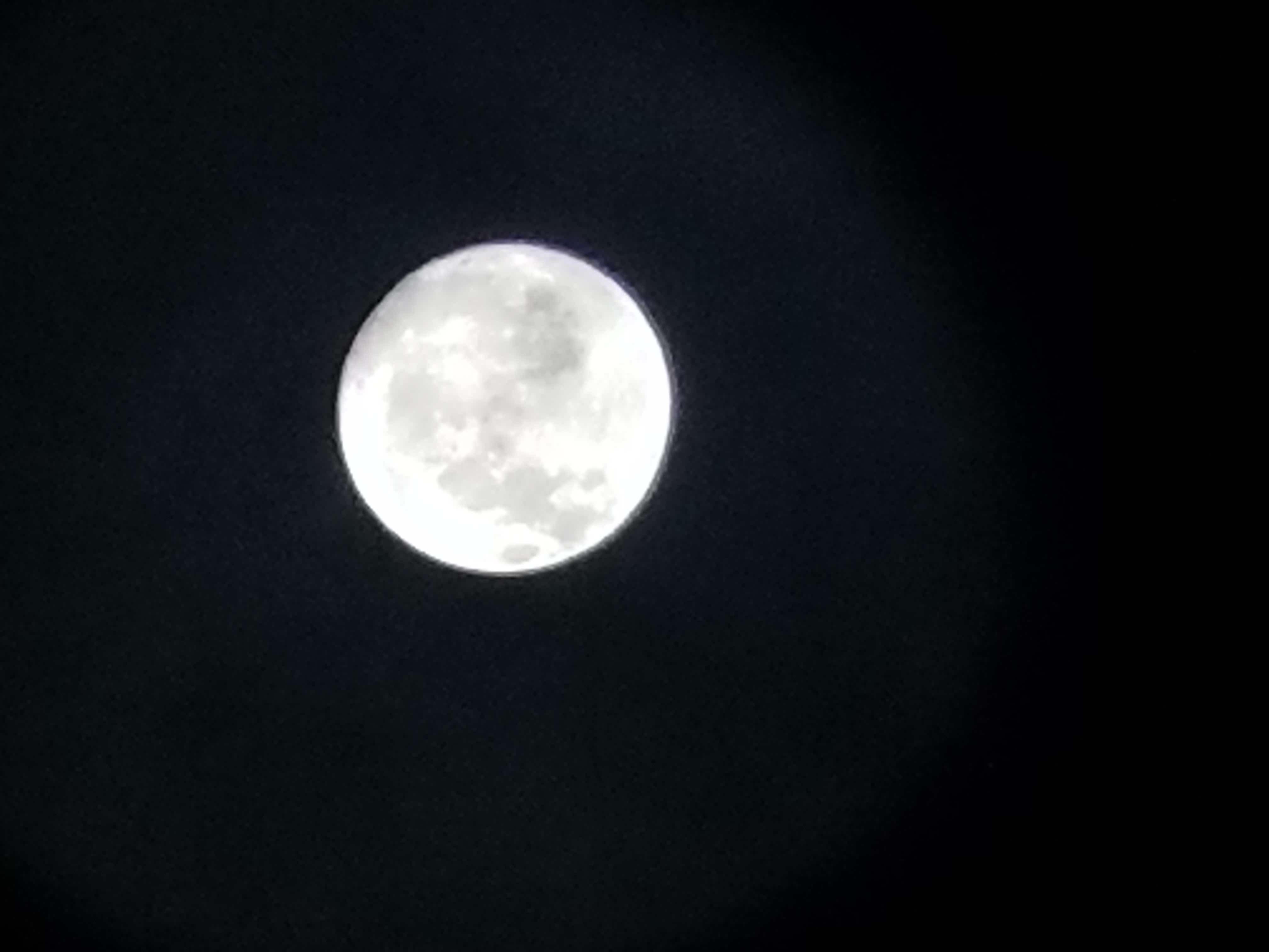 中秋の名月…寒い:(´>ω