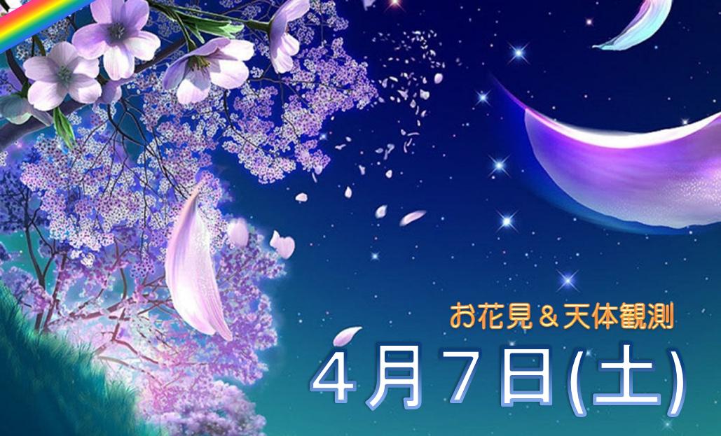 🌸4/7(土)夜桜🌸半月の夜に🌸