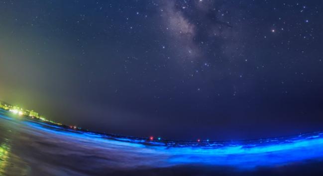 夜光虫と天体観測 星と海